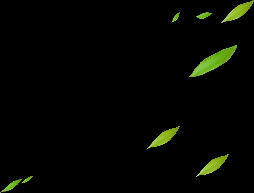 绿叶 雕刻纹样 黑白